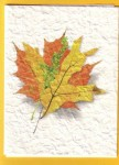 thanksgiving cards_2