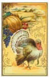 thanksgiving cards_7