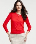 ann taylor women's fashion winter 2012_1