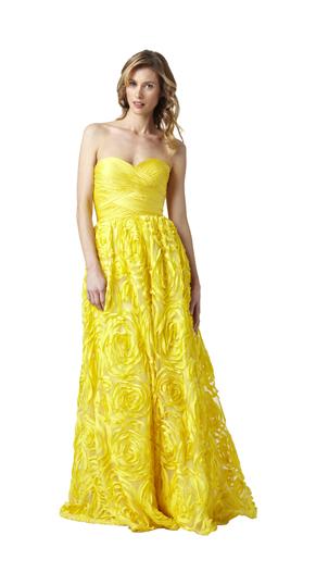 Adrianna Papell Spring 2012 Evening Maxi Dresses (5)