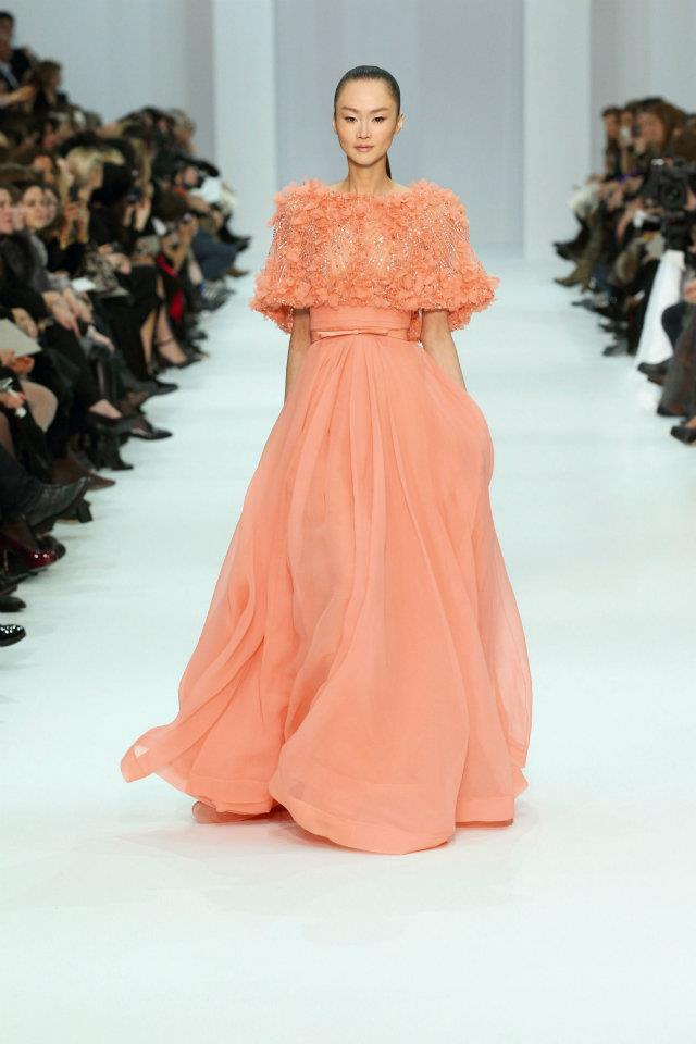 Elie Saab Haute Couture Spring Summer 2012_5