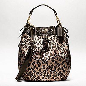 Coach New Arrival Collection Chelsea For More Visit Bags 2017