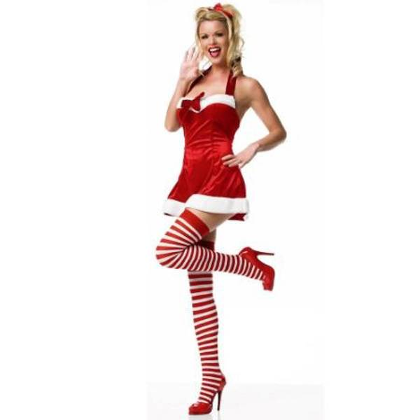 Sexy Adult Christmas Costumes 2013-2014 (15)